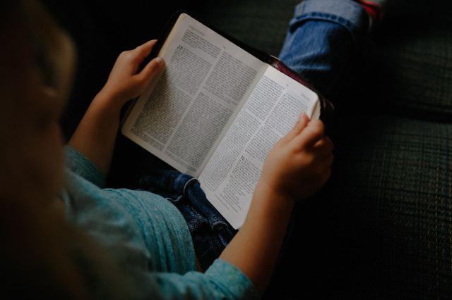 lesen vorteile